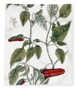 Chili Pepper, 1735 Fleece Blanket