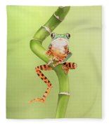 Chilling Tiger Leg Monkey Tree Frog Fleece Blanket
