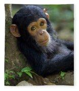 Chimpanzee Pan Troglodytes Baby Leaning Fleece Blanket