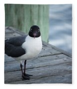 Chincoteague Island - Great Black-headed Gull Fleece Blanket
