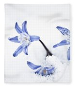 Chionodoxa - Glory Of The Snow Fleece Blanket