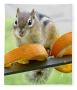 Chipmunk And Oranges 2 Fleece Blanket