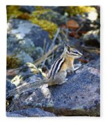 Chipmunk On The Rocks Fleece Blanket
