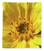 Chipmunk Planting - Sunflower Fleece Blanket