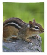 Chippy On The Move Fleece Blanket