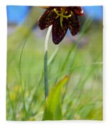 Chocolate Lily Two Fleece Blanket