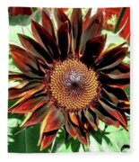Chocolate Sunflower Fleece Blanket