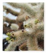 Cholla Cactus Garden Closeup Fleece Blanket