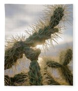 Cholla, Organ Pipe National Monument, Az  January 2015 Fleece Blanket