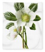 Christmas Rose Floral Illustration Fleece Blanket