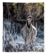 Chukar Fleece Blanket