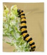 Cinnabar Moth Caterpillar Fleece Blanket