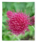 Cirsium Burgandy Thistle Fleece Blanket