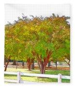 City Park 9 Fleece Blanket