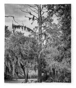 City Park Lagoon - Bw Fleece Blanket