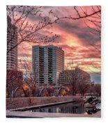 Citygarden Gateway Mall St Louis Mo Dsc01485 Fleece Blanket