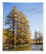 Claree Valley In Autumn - 1 - French Alps Fleece Blanket