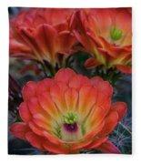 Claret Cup Cactus Flowers  Fleece Blanket