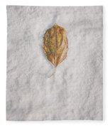 Clash Of Seasons Fleece Blanket