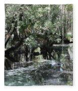 Clear Lithia Springs Fleece Blanket
