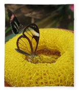 Clearwing Butterfly Fleece Blanket