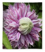 Clematis Josephine #7 Fleece Blanket