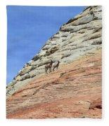 Cliff Dwellers Fleece Blanket