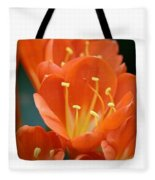 Clivia Tote Bag Fleece Blanket
