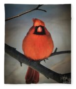 Close Encounter On A Blustery Day Fleece Blanket