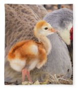 Close To Mother Fleece Blanket