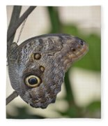 Close Up Of A Pretty Brown Morpho Butterfly  Fleece Blanket