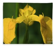 Close Up Of A Yellow Bearded Iris Fleece Blanket