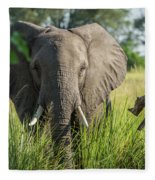 Close-up Of Elephant Behind Bush Facing Camera Fleece Blanket