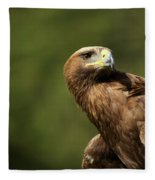 Close-up Of Golden Eagle With Head Turned Fleece Blanket