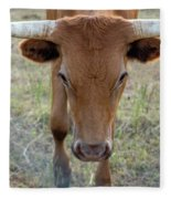 Close Up Of Longhorn Head Through Fence Fleece Blanket