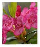 Close-up Of Pink Horatio Flowers Fleece Blanket