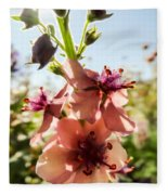 Close-up Of Pink Mullein Flowers Fleece Blanket