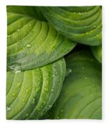 Close-up Of Raindrop On Green Leaves Fleece Blanket