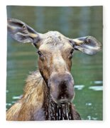Close Wet Moose Fleece Blanket