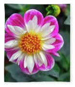 Closeup View Of A Dahlia That Was In The Cesky Krumlov Castle Gardens Fleece Blanket