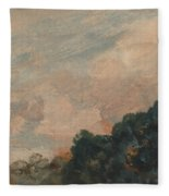 Cloud Study With Trees Fleece Blanket