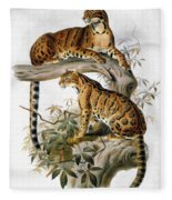 Clouded Leopard, 1883 Fleece Blanket