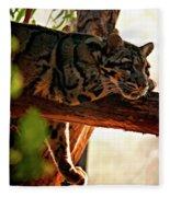 Clouded Leopard II Fleece Blanket