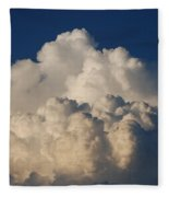 Cloudy Day Fleece Blanket