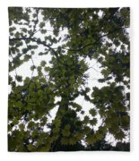 Cloudy Skies Through Maple Fleece Blanket