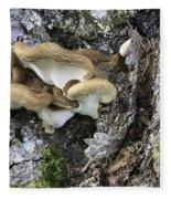 Cluster Of Fungi Fleece Blanket