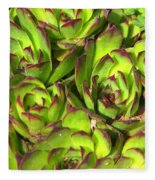 Clustered Succulents Fleece Blanket