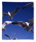Cnrg0302 Fleece Blanket