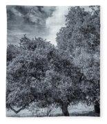 Coast Live Oak Monochrome Fleece Blanket