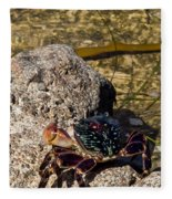 Coastal Crab Fleece Blanket